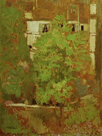 Chestnut Trees in Rue Truffaut (in the 17th Arrondissement in Paris), c.1900