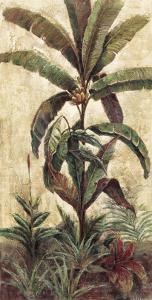 Exotic Palms II by Eduardo Moreau