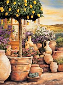 Lemon Topiary by Eduardo Moreau