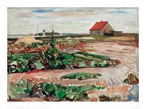 Lanscape near Travemunde, 1907 by Edvard Munch