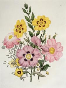 Yellow and Pink Mixed Flowers by Edward Burne-Jones