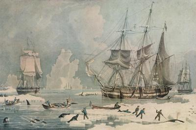 Northern Whale Fishery, c1829