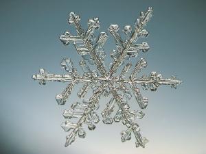 Snowflake, Close Up by Edward Kinsman