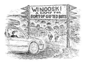('Forestdale Camp for Sort of Gifted Boys.')  - New Yorker Cartoon by Edward Koren