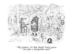 """""""My goodness, it's little Benjie!  You've grown into quite a distinguished?"""" - New Yorker Cartoon by Edward Koren"""