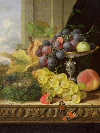 Still Life of Fruit, a Tazza and a Bird's Nest