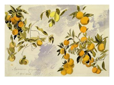 Orange Trees, 1863 (W/C, Pen and Ink over Graphite on Heavy Wove Paper)