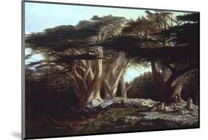 The Cedars of Lebanon by Edward Lear