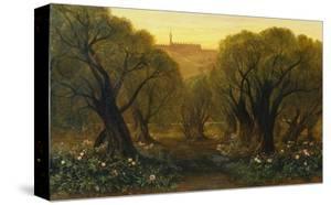 The Garden of Gethsemane by Edward Lear