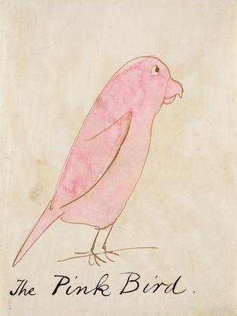 The Pink Bird, from 'sixteen Drawings of Comic Birds'