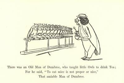 There Was an Old Man of Dumbree, Who Taught Little Owls to Drink Tea
