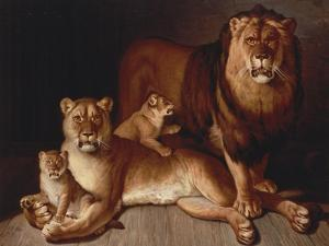 A Pride of Lions by Edward S^ Curtis