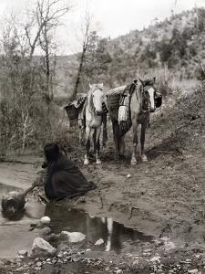 Apache and Horses, c1903 by Edward S^ Curtis