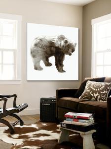 Bear by Edward Selkirk