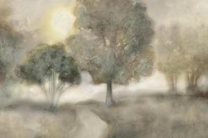 Foggy Field by Edward Selkirk