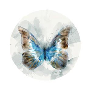 Indigo Butterfly II by Edward Selkirk