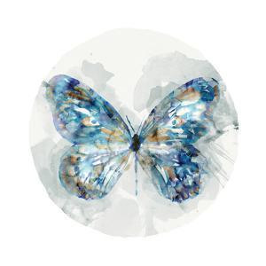 Indigo Butterfly III by Edward Selkirk