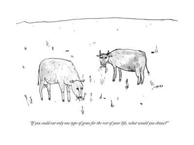 """If you could eat only one type of grass for the rest of your life, what w?"" - New Yorker Cartoon by Edward Steed"