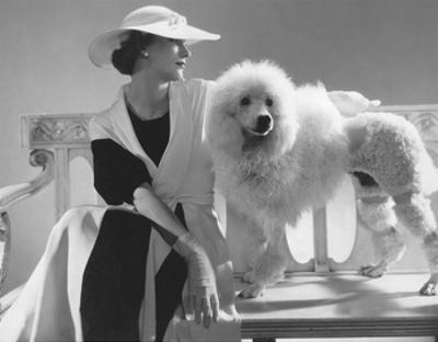 Vogue - July 1934 - Isabel Johnson Sitting with Poodle
