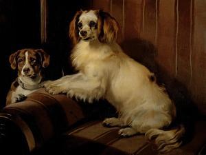 Bon(E)Y and Var, C.1843 by Edwin Henry Landseer