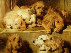 Hounds in a Kennel by Edwin Henry Landseer