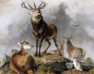 Scene in Braemar, Highland Deer by Edwin Henry Landseer