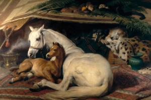 The Arab Tent, 1866 by Edwin Henry Landseer
