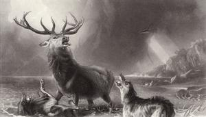 The Stag at Bay by Edwin Henry Landseer