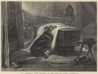 The Shepherd's Chief Mourner