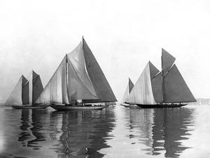 Schooners Racing Vagrant, Queen Mab, Sonnica by Edwin Levick