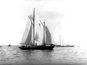 Trade Wind in the Bermuda Race by Edwin Levick