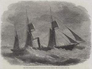 The Union Steam-Ship Company's Cape Mail Steamer Briton by Edwin Weedon