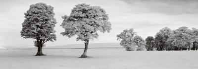 Edzell, Scotland-Helmut Hirler-Art Print