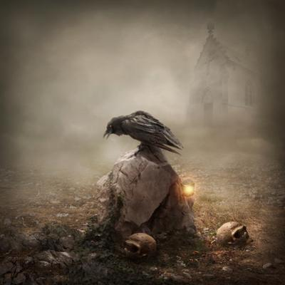 Crow Sitting on a Gravestone by egal