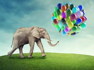 Elephant with a Colorful Balloons by egal