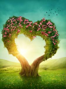 Heart Shaped Tree in the Meadow by egal