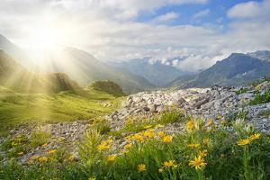 Mountains Landscape in Vorarlberg, Austria by egal