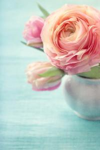 Pink Flowers in a Vase by egal