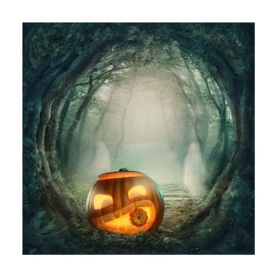 Pumpkin In Dark Forest by egal