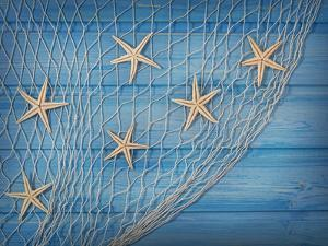 Seastars on the Fishing Net on a Blue Background by egal