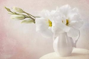 White Flowers in a Vase by egal