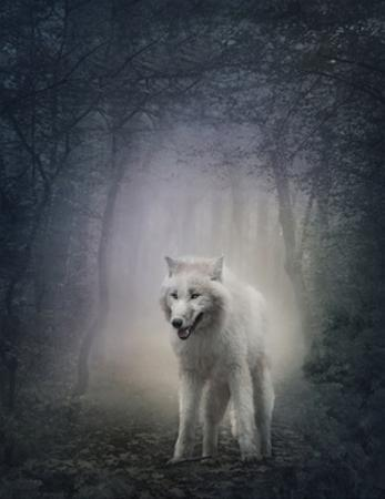 White Wolf by egal