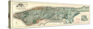 Sanitary and Topographical Map of the City and Island of New York, c.1865 by Egbert L^ Viele