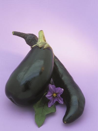 Eggplants and their Leaf and Flower (Solanum Melongena)-Wally Eberhart-Photographic Print
