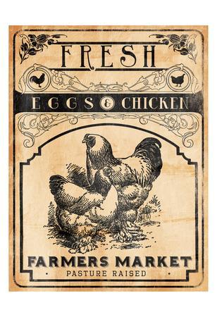 https://imgc.artprintimages.com/img/print/eggs-chicken_u-l-f93sjq0.jpg?p=0