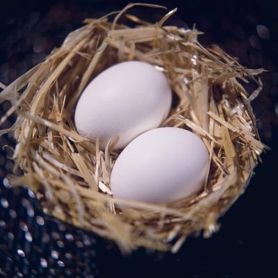 Eggs-Cristina-Photographic Print