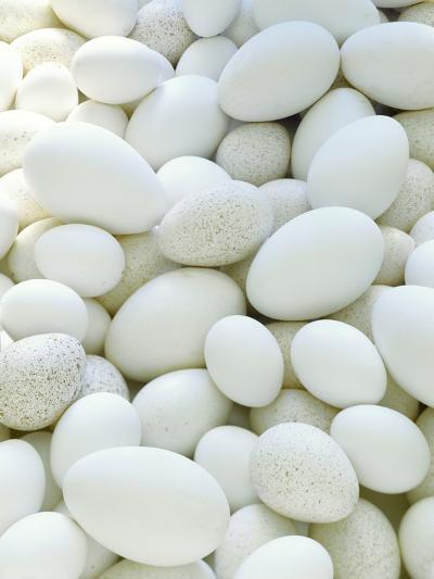 Eggs-David Munns-Photographic Print