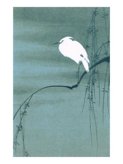 Egret on Branch--Art Print