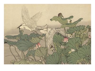 https://imgc.artprintimages.com/img/print/egrets-and-lotus_u-l-pf2bkq0.jpg?p=0
