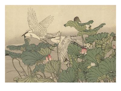 Egrets and Lotus-Imao Keinen-Giclee Print